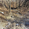 3/15/14: Kaitlin Coolahan's photos from her walk in Patapsco State Park, at the end of Halethorpe Farms Road. Lots of trash that needs to be picked up... potential for a larger cleanup.