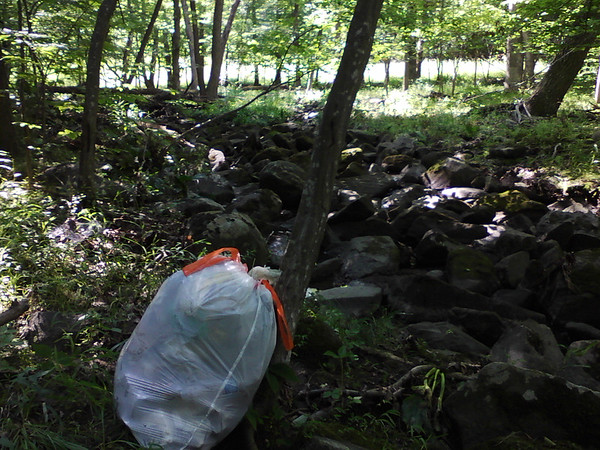 """6/29/14: Chuck Lechner's cleanup along Miller Run north of Hwy 40, and also the stretch behind the Bedding Barn and other stores along Hwy 40. Howard County, Miller Run subwatershed. """"I collected 1.5 kitchen bags of trash (see photo) from the north branch Millers Run from Drexel Woods Drive to about 1200 feet downstream to an old small concrete bridge. I'm disposing it with my household trash. Most trash was plastic bags, but also many cups and cans. The plastic bags were 50%fairly old, that is they came apart when pulled; the other half were new. The cans were almost entirely old, mostlyburied and filled with soil. Notably there were several dozen dog poop bags in the stretch nearest Drexel Woods Drive; I suspect people do their pickup duty while they walk, they toss them in the creek when they cross it. Half a dozen of these had washed downstream 1000 feet."""" 1.5 bags: 25+12.5 = 37.5 lbs total."""