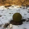 2/1/2014: PVSP at the end of Halethorpe Farm Rd in Baltimore County, between I-895 and the river. Always find one or more balls during any floodplain cleanup.
