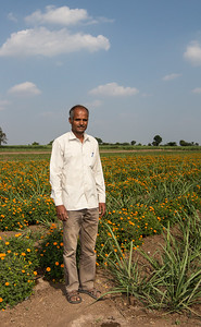 A farmer shows off his agriculture demo plot that combines wide spacing sugar cane, marigolds, and drip irrigation in Darekarwadi.