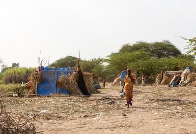 Huts in Darekarwadi.
