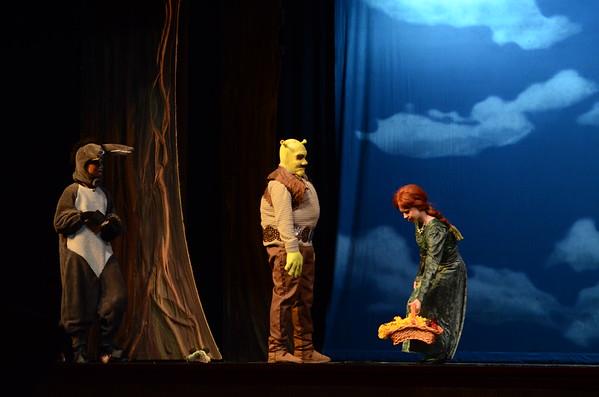 Shrek the Musical at the Dr. Phillips Center