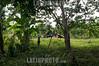 COSTA RICA-Cabecar community 1©Jaramillo