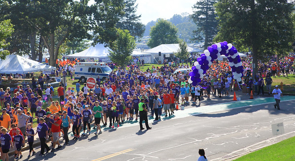 Over 3,500 walkers begin the 2015 Walk to End Alzheimer's held last Saturday.