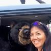 "Apr 24, 2015  Carpooling to Mammoth with ""Hugo"""