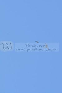 DSC_2340