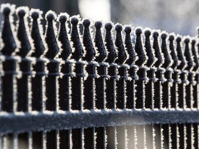 Hoar Frost & Fence