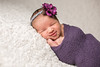 CAP2014-Kelly-NEWBORN-1027