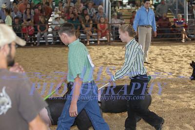 2015 Swine showmanship