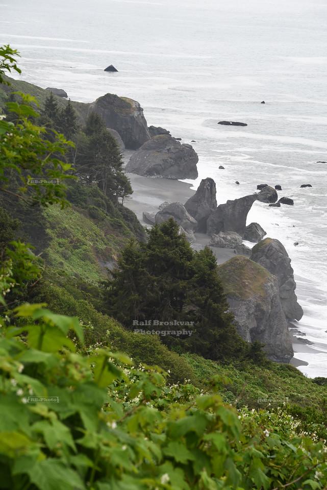 Pacific Ocean seen from the Coastal Drive near Klamath, California