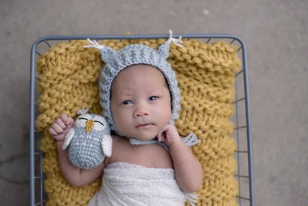 aurelia newborn