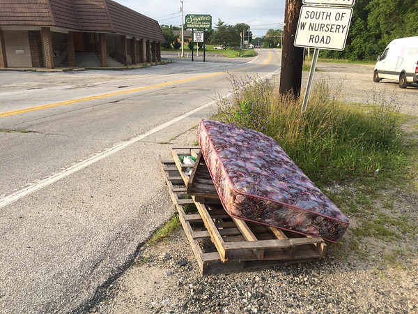 6/30/2015, Jon Merryman, Patapsco Watershed, AA County, River along Hammonds Ferry Rd across from Snyder's in A.A. county, collected a mattress and added this to a previous pile collected on 6/27/2015.  Estimated weight of mattress - 20 pounds.