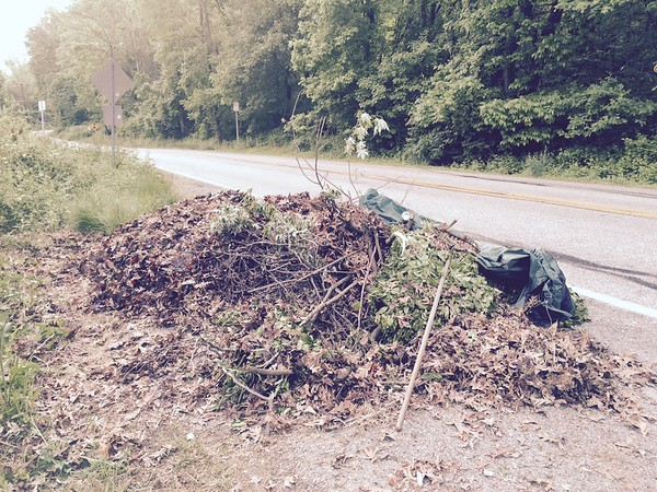 5/15/2015, Jon Merryman, Patapsco Watershed, AA County,  along River Rd near West Nursery Rd, raked lawn debris closer to the road for easier pickup. There's a small pile at the bend in the road too.  Estimated weight 100 pounds weight not recorded due to it being lawn waste.