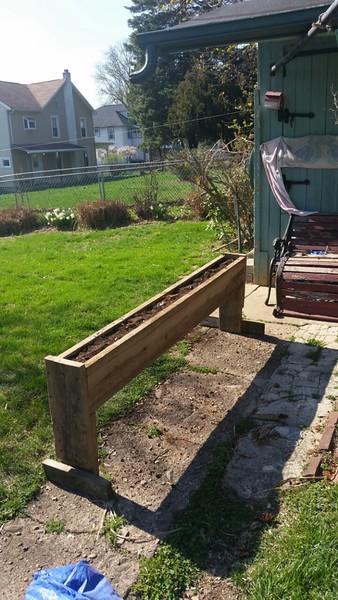 Damien's garden April