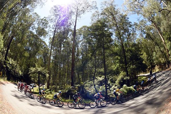 Jayco Herald Sun Tour - Stage 2