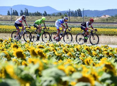 Tour de France Stage 14: Montelimar > Villars-les-Dombes, 209kms