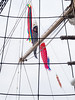 Caught in the rigging