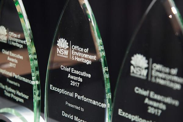 Chief Executive Awards - Print