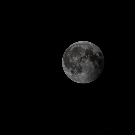 Super Blood Wolf Moon Select 1-20-19-12