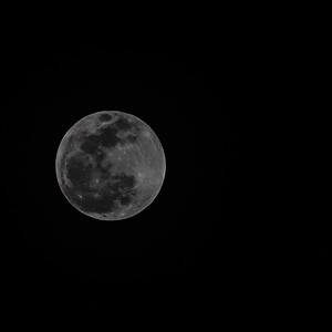 Super Blood Wolf Moon Select 1-20-19-1