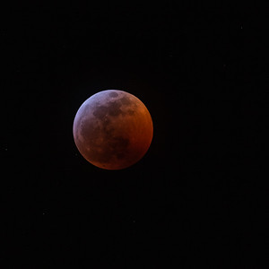 Super Blood Wolf Moon Select 1-20-19-7