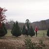 2019-Santa-and-Christmas-Trees-14