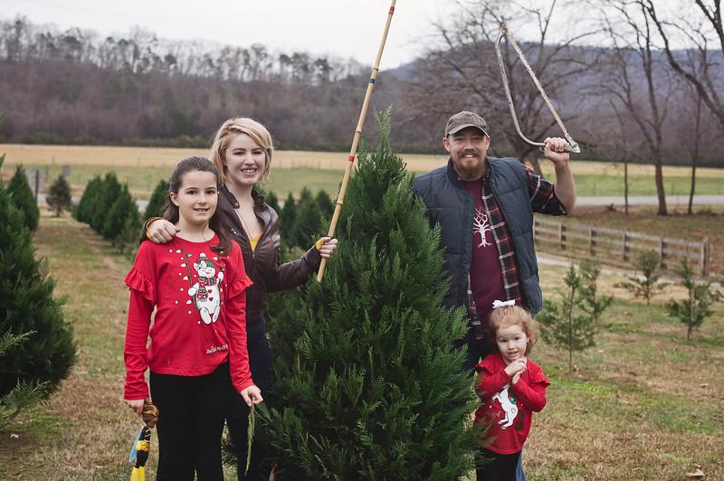 2019-Santa-and-Christmas-Trees-1
