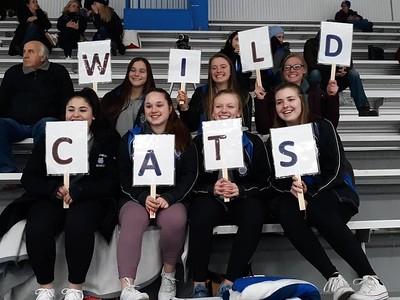 Wildcats manager spirit