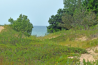 DSC_0437 2021 Michigan Road Trip