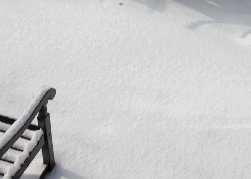 Winter at 2229 2015-1744