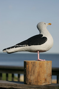 A statue of the Great Black backed Gull as seen at the 23rd annual watch on Sunday. photo by Ray Riedel