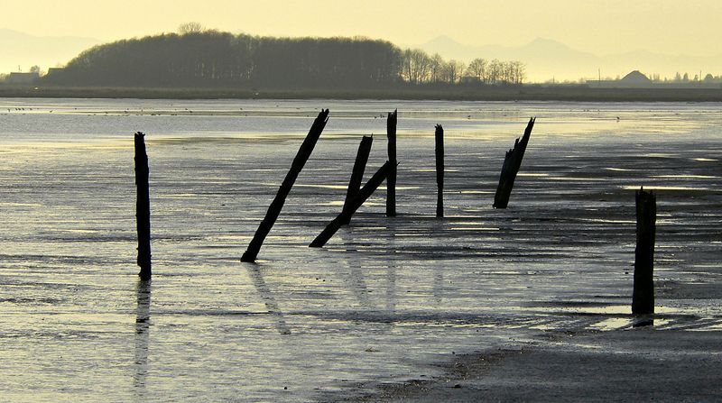 Mud Bay Ghosts - What used to be here?