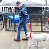 John P. Cleary | The Herald Bulletin<br /> Nate Kissick takes Boss for his mid-day exercise walk in a light rain.