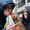 John P. Cleary | The Herald Bulletin<br /> Sebastian gives Humane Society worker Nate Kissick a big kiss as Hayden Mooneyhan holds the little dog in her arms.