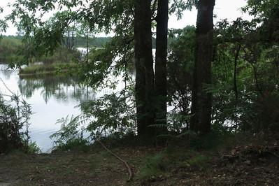 L'après-midi nous partons avec nos vélos faire une balade autour des étangs autour de Hostens.