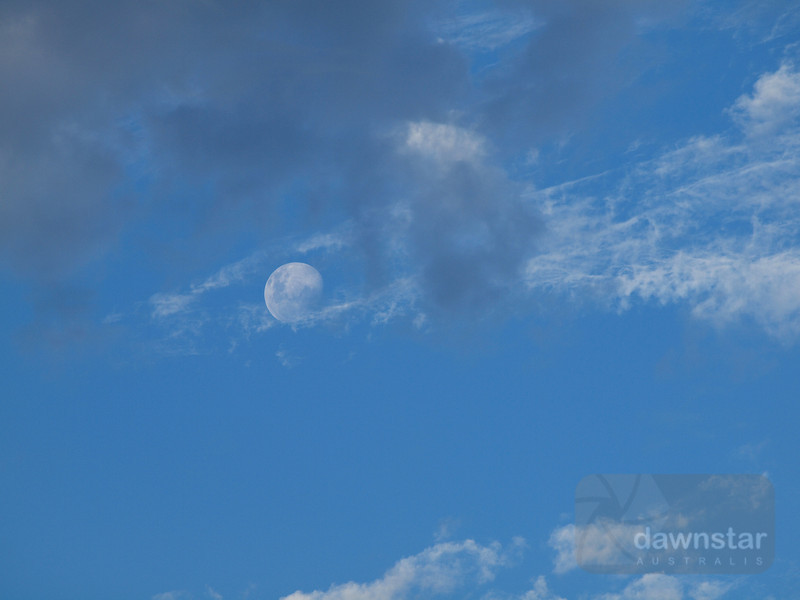 "<A HREF=""http://www.dawnstar.id.au/photography/365-before-thirty/day-156-orbiting-companion/"">Day 156 – Orbiting Companion</A>"