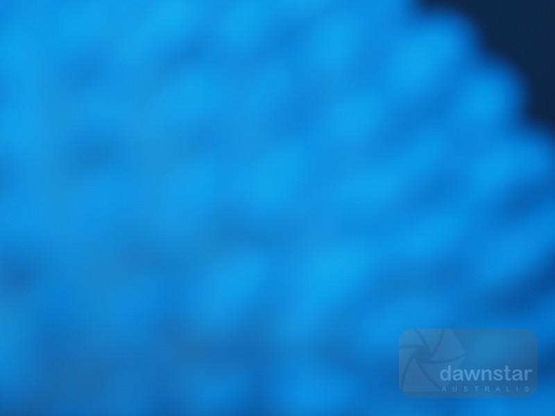 """<A HREF=""""http://www.dawnstar.id.au/photography/365-before-thirty/day-194-hazy-blue/"""">Day 194 – Hazy Blue</A>"""