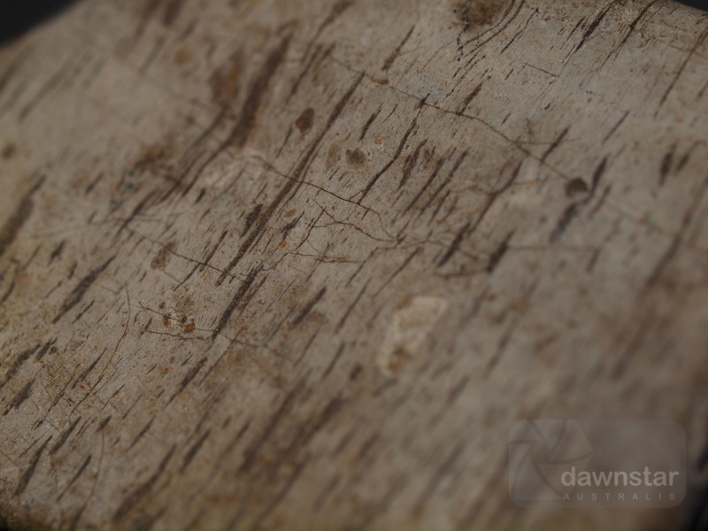 "<A HREF=""http://www.dawnstar.id.au/photography/365-before-thirty/day-124-stone-wood/"">Day 124 – Of Stone & Wood</A>"