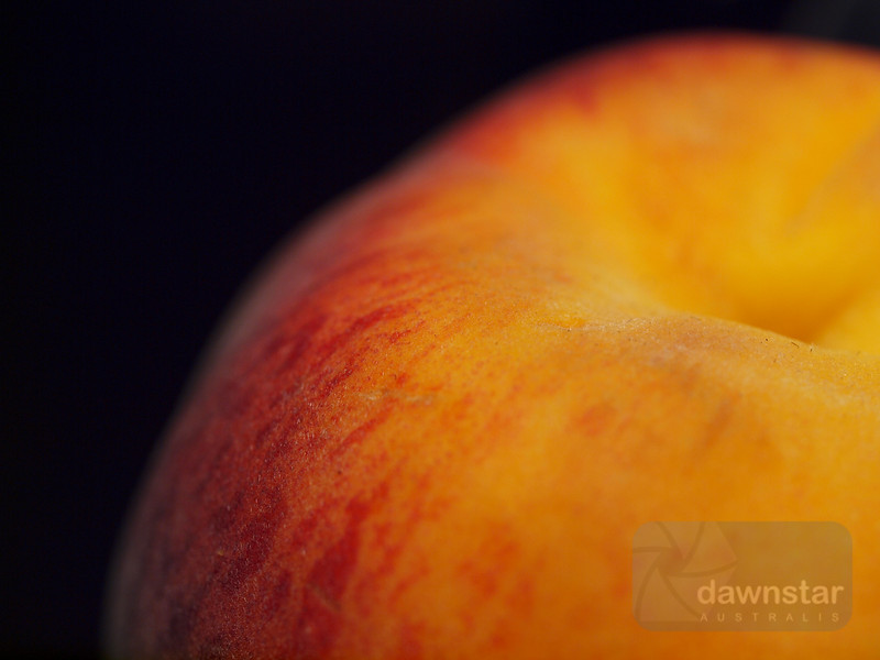 "<A HREF=""http://www.dawnstar.id.au/photography/365-before-thirty/day-110-slight-fuzz/"">Day 110 – Slight Fuzz</A>"