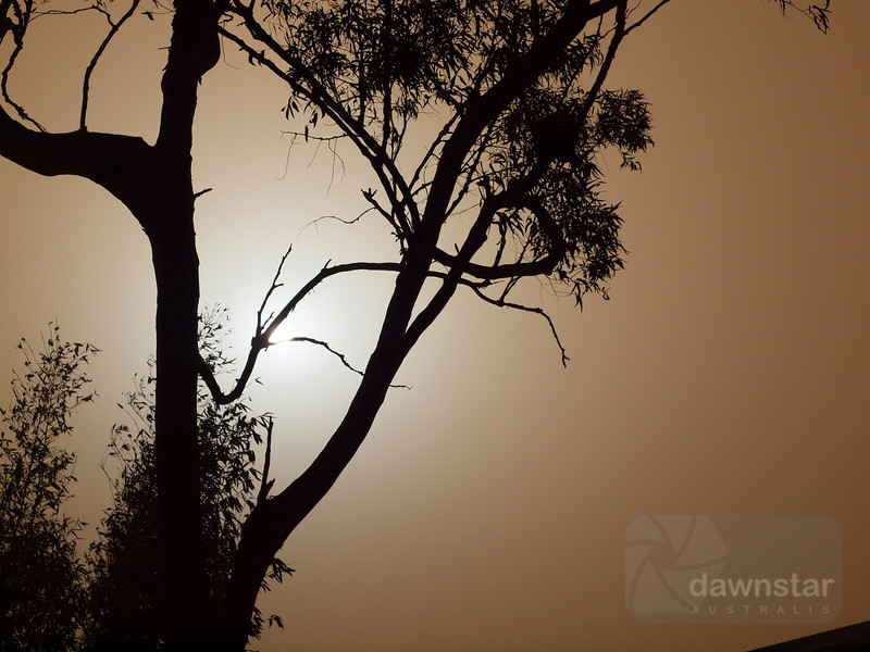 "<A HREF=""http://www.dawnstar.id.au/photography/365-before-thirty/day-30-dust-dust/"">Day 30 – Dust To Dust</A>"
