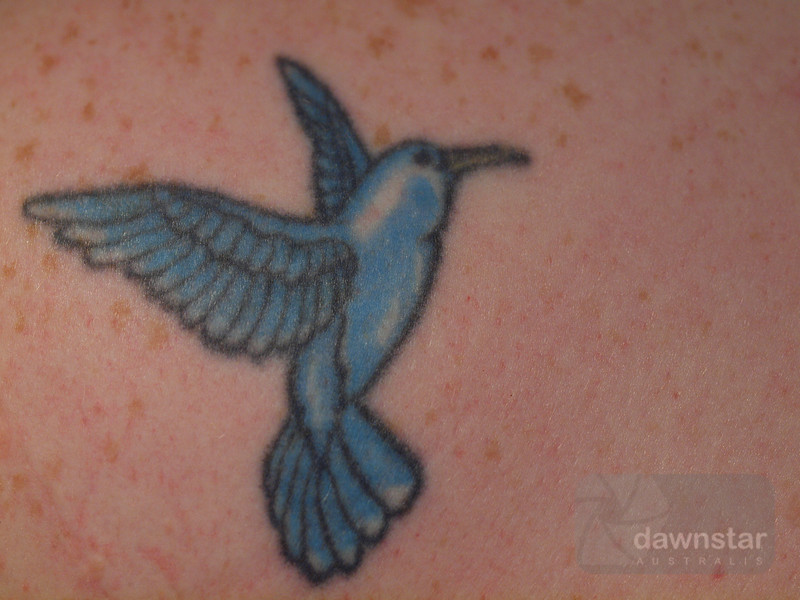"""<A HREF=""""http://www.dawnstar.id.au/photography/365-before-thirty/day-153-spread-wings/"""">Day 153 – Spread Those Wings</A>"""