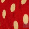 """<A HREF=""""http://www.dawnstar.id.au/photography/365-before-thirty/day-191-ladybug/"""">Day 191 – Ladybug</A>"""