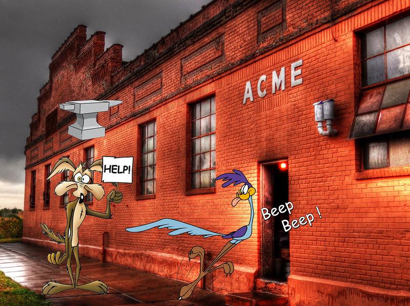 256/365-ACME