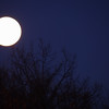 8/365-Full Winter Moon 2