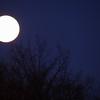 8/365-Full Winter Moon 2