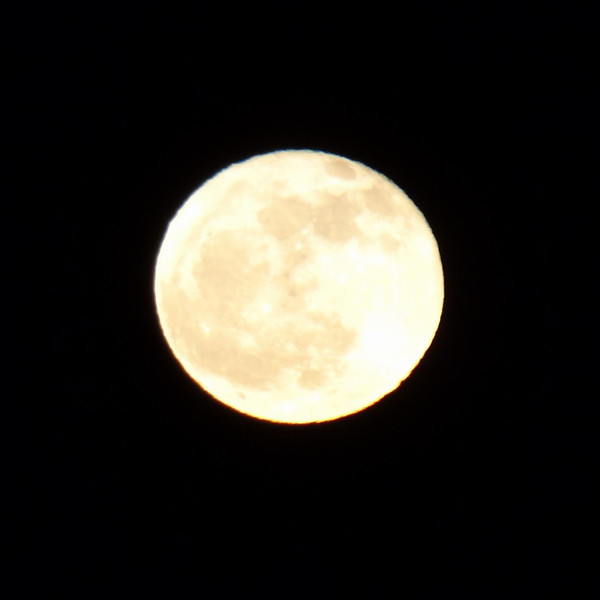 9/365-Just the Moon