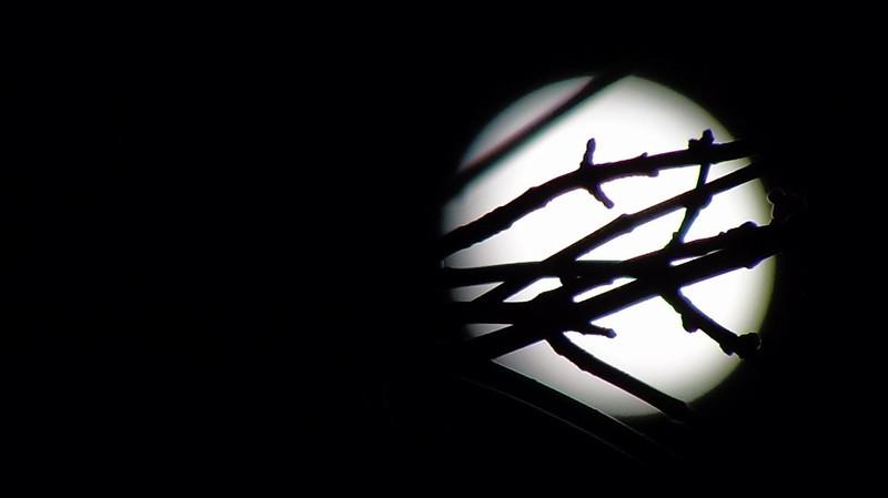 7/365-Full Winter Moon