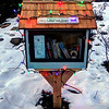 361/365-LittleFreeLibrary