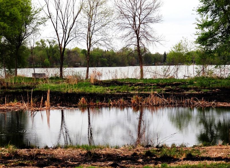 108/365-Reflections on Lake Nokomis