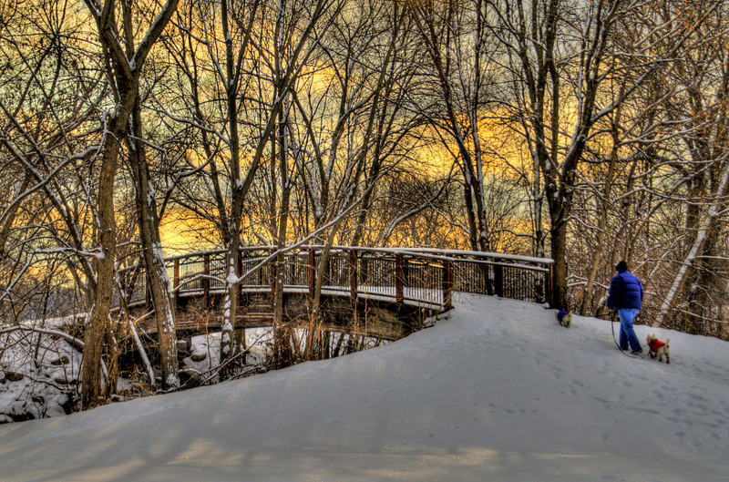363/365-A walk through fresh fallen snow